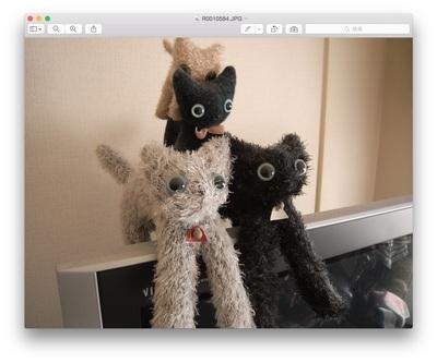 子猫たち(人形)
